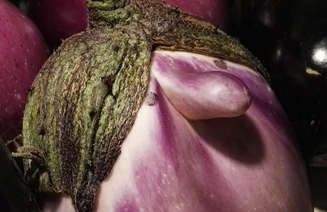 Profilo... di melanzana