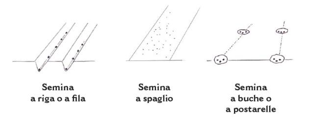 I vari tipi di semina