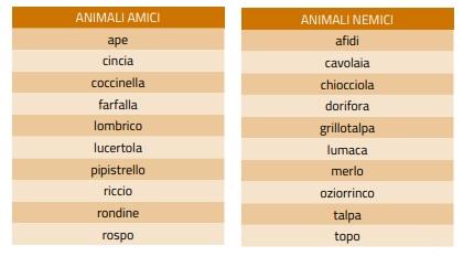 Animali amici e nemici del'orto
